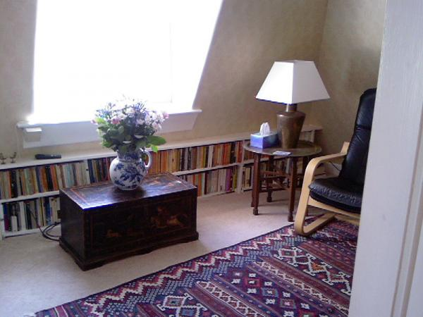 Living room window & book shelves